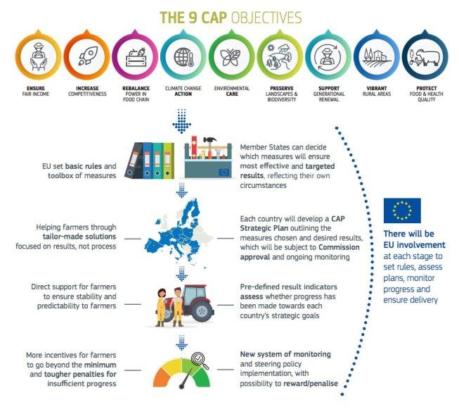 9 CAP objectives beyond 2020